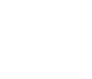 F3 Icon - White
